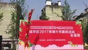 四川省成都市锦江区传统文化交流促进会会长13908038216