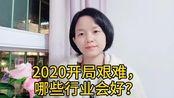 林玉:武汉疫情过后,哪些行业会好?