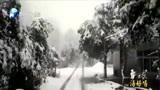 """暴雪黄色预警,道路结冰橙色预警,郑州、新乡、开封、许昌请""""接招"""""""