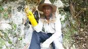 小伙农闲时进山找蜜蜂,寻着蜂路找到一窝,搬来机器直接取蜂蜜