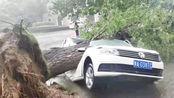 郑州市区突降狂风暴雨,凉爽了,可惜这车主还郁闷中