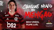 【南美双冠王】费利佩·路易斯●护卫弗拉门戈左翼的19赛季