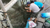 2019清网行动-漳州市支队总视频