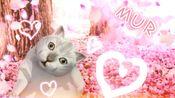 【mur猫/勾指起誓】