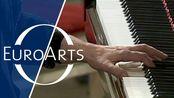 拉威尔:D大调左手钢琴协奏曲(埃莉索·维尔萨拉泽,尼古拉·阿列克谢耶夫)