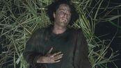 《高草丛中》:头皮发麻,一部关于草的恐怖片!心慌方导演新片