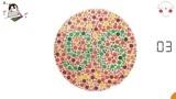 色盲自测图:你能看到数字几?看不清的就不要想驾照了