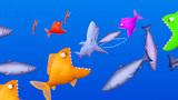 美味海洋 大鱼吃小鱼游戏 好多的鱼啊, 我们小鲨鱼要小心