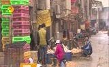 [湖南新闻联播]长沙市活禽经营市场今起休市21天