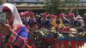 云滇最山歌走进峨山富良棚彝族舞龙文化节,感受不一样的彝家风情