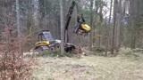 德国最先进的伐树机械!一起来看看是怎么操作的!