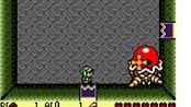 【功略向】GB塞尔达传说梦见岛DX 绿帽子的童年回忆 彩色迷宫+完成收集