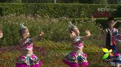 [《银河之声》走进鹰潭]合唱《操石磉》 表演者:鹰潭市第二幼儿园小朋友 鹰潭市青鸟舞蹈艺术学校学生