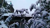 雪中的湖北省孝感市农二村,银装素裹,就像一副美丽的画卷