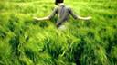 刹那:Glen Hansard Marketa Irglova - Feeling The Pull[www.65ws.com]