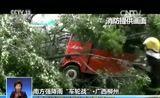 """[共同关注]南方强降雨""""车轮战""""·广西柳州:大树被风吹倒 车辆被压"""