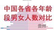 男女比例失调!中国各省各年龄段男女人数对比(改良版)-数据可视化