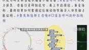 天津大学已成功研发新冠病毒疫苗