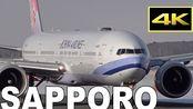 【转载】美丽的雪景-札幌新千岁机场的看飞机-ANA JAL……