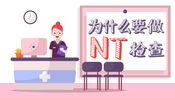 为什么要做NT检查?胎儿排畸第一关,孕妈一定要知道