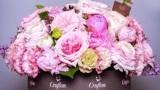 怎样开花店?花艺在线培训第21讲:韩式圆形花盒的插花制作