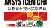【ICEM 网格划分】丨[纪兵兵] ANSYS ICEM CFD网格划分实例讲解Part2-自动体网格生成及实例