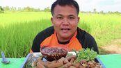 [Hagna]泰国吃播咀嚼音酸豆角