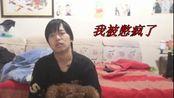 【标准结局+抱枕组】蔡蔡与狗在防疫期间的正(逗)常(逼)生活