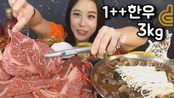 - 水乡妹妹素养 - [Sub] Real Sound 韩牛+最高等级3kg烤肉煎锅 Mukbang eating show