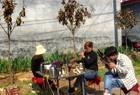河南许昌市农村白事接客,大妈的精彩的唢呐演奏,听着太过瘾了!
