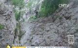 [第一时间]身边的安全 河北邯郸:少年游山不慎遇险 消防紧急救援