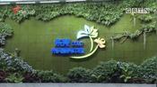 全国首个互联网+电力服务平台亮相东莞市民服务中心