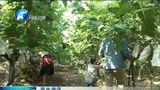 [中原晨报]民生资讯 河南省财政拨付农业结构调整资金6000万元