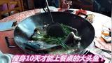 VLOG 13 佛山农村的地道大头鱼:每条大鱼减肥10天才下锅煮,100元3人吃到饱!