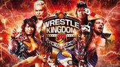 【NJPW】2020.01.04 Wrestle Kingdom 14 ~ 2020摔角王国14 第一日(日英双语)