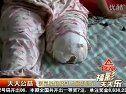 青海电视台生活频道《福彩天天乐》节目第2244期 2012年01月10日