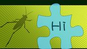 Hare教程_Image Display_显示图片