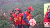 福建安溪县农村民俗活动,四五百人天没亮就往山上走,你们见过吗