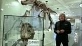"""最早的癌症病患,出现在六千多年前,这种病大家称作""""螃蟹"""""""