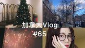加拿大Vlog#65-圣诞将至|烟花|圣诞树|diy染发|凌晨两点的火警|生活记录|碎片