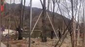 拉萨新网红拍摄打卡圣地南山公园
