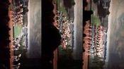 安徽省黄山市歙县徽州师范学校元旦汇演13音乐2班壮族舞蹈—走在山水间—在线播放—优酷网,视频高清在线观看
