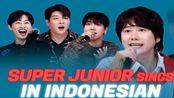 【中字】SUPER JUNIOR 用印尼语唱歌《Sorry Sorry, Mr.Simple, 2YA2YAO!》Try-lingual Live