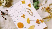 记得消毒消毒—出门捡落叶制作小日历,打算贴满整个墙壁