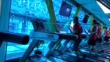 在淮安做健身教练需要经过培训吗?费用贵吗?