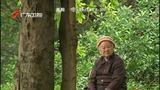 [午间新闻-广东]专家:机关事业单位养老改革期待破题