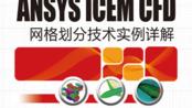 【ICEM 网格划分】丨[纪兵兵] ANSYS ICEM CFD网格划分实例讲解Part3-二维结构网格生成及实例