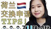 荷兰交换(留学)申请Tips! MVV 签证 | DUWO | Financial Letter | 出生证明 | TUDelft | 代尔夫特理工大学