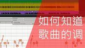 #020【Mix A】如何知道歌曲的调【总线炸了】【Erilan Fun】
