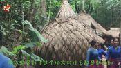 """中国""""最神秘""""原始部落,婚后男人住在树上,繁衍后代全靠竹竿!"""